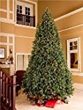 Winterland WL-TRSQ-06 6 ft. Classic Sequoia Tree With Metal Stand