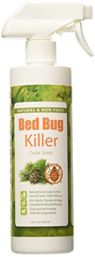 EcoRaider Killer Non toxic Extended Protection