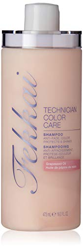 Fekkai Technician Color Care Shampoo, 16 Fluid Ounce (Fekkai Full Volume Shampoo)