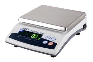 E6000 6000 G/1G Bilancia di precisione Laboratorio Bilancia di precisione Bilancia Oro G & g GundG