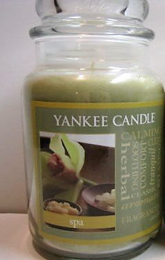 Yankee Candle Home Classics 22 oz Jar Candle SPA - Retired Scent