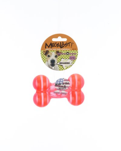 JW Pet Company Megalast Bone Dog Toy, Small, Colors Vary, My Pet Supplies