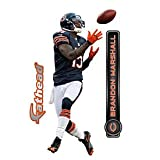 Chicago Bears Brandon Marshall NFL Teammate Fathead 10