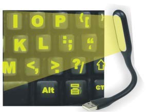 Fluorescent Keyboard Stickers. Commercial Grade Inlays (Not Ink) USB LIGHT (FREE). Will not Wear or Fade. XLarge Symbols Great for Sight Impaired. (U.S. English Keyboard)