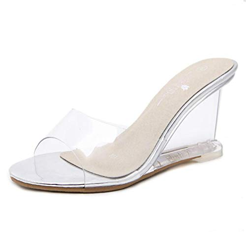 Women's Crystal Wedge Sandals Clear Lucite Slip On Open Toe Fashion High Heeled Pumps Sandal Silver