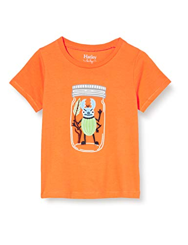 Hatley Short Sleeve T-Shirts baby jongens T – Shirt