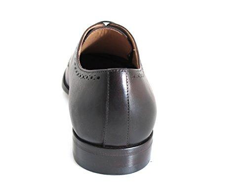 Doucals Mens 41104 Lace Up Dressy / Casual Scarpe Italiane, Testa Di Moro