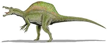 a883bb81779ce5 Autocollant sticker dinosaure dino jurassique deco enfant chambre  spinosaurus