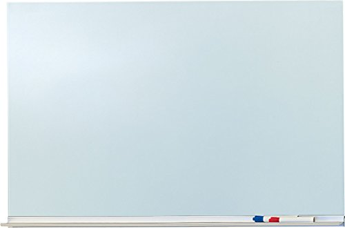 60'' x 48'' Glass Writing Surface - Clear Glass, Magnetic by Peter Pepper