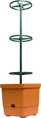 Hydrofarm GCTT Tomato Tree with 3-Foot Tower