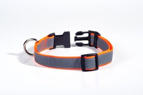 Petflect Reflective Dog Collar, Medium Large, My Pet Supplies