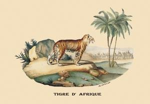 Tigre d'Afrique (Tiger) Fine art canvas print (12