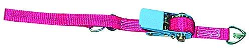 Huck Badminton Gurt- und Spannvorrichtung mit Ratsche Huck Netze