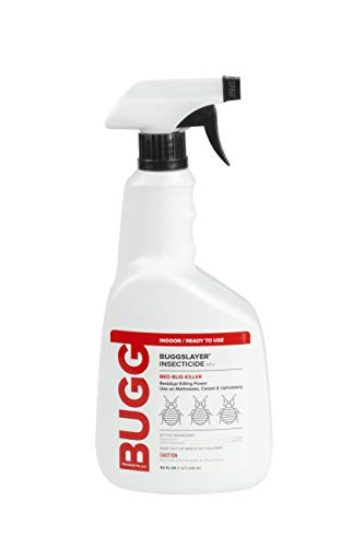 BUGGSLAYER Insecticide ready-to-use INDOOR 32-oz