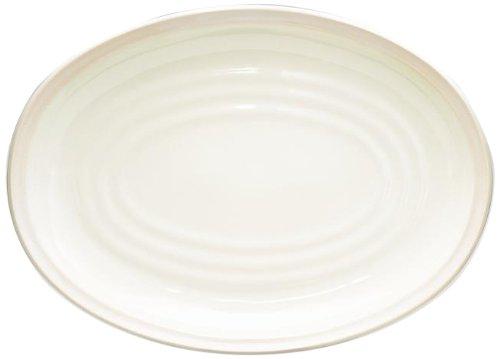 Noritake Colorvara Oval Platter, 16-Inch, White (Noritake Platter Stoneware)