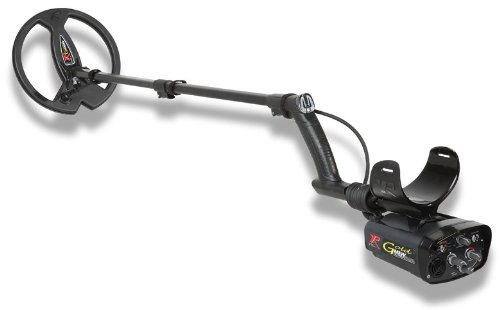 XP Metal Detectors Gold Maxx Power - Detector de metales (frecuencia 18 kHz, disco