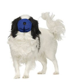 FOUR FLAGS MUZZLE PUG NOSE - SMALL ()