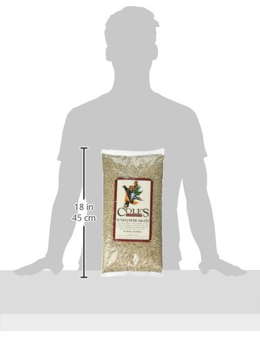 Cole's SM05 Sunflower Meat Bird Seed, 5-Pound