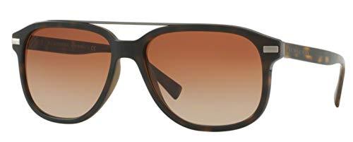 Marron be4233 Sonnenbrille Dark Havana matte browngradient Burberry EfqvZ7