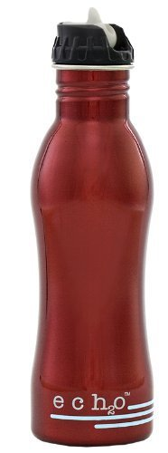 - EcoUsable Ech2o 25 oz Stainless Steel Filtered Bottle - Metallic Red by EcoUsablde