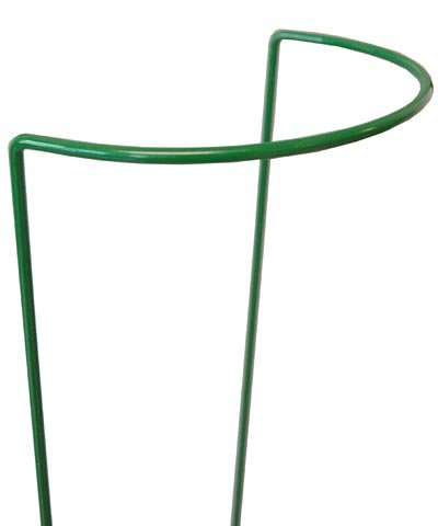 Gardman Semi-Round Plant Supports, 8'' x 24'', Pack of 25