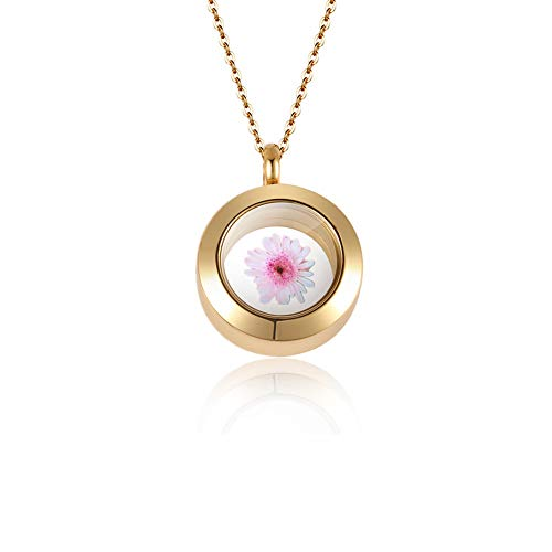 starton Stainless Memorial Glass Locket Pendant - Cremation Jewelry - Ash Necklace - Urn Necklace - Pet Memorial - Vial Necklace - Vial for Hair (Gold) ()