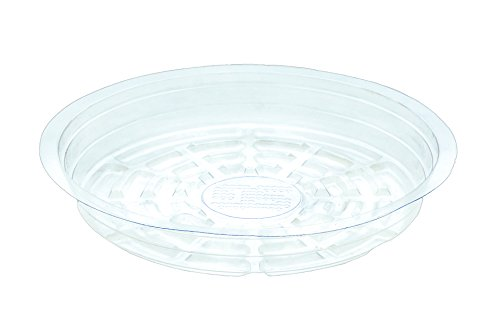 My Garden Kit Clear Plant Saucers 10 inch Pack of 5 Great for Indoor Outdoor Flower Pot Drip Tray (10 Inch Pack of 5)