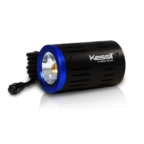 Kessil Wide Angle LED Grow Light, Blue