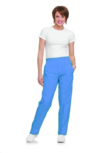 Landau Women's Classic Fit Elastic Waist Scrub Pants Medium Petite Ceil ()