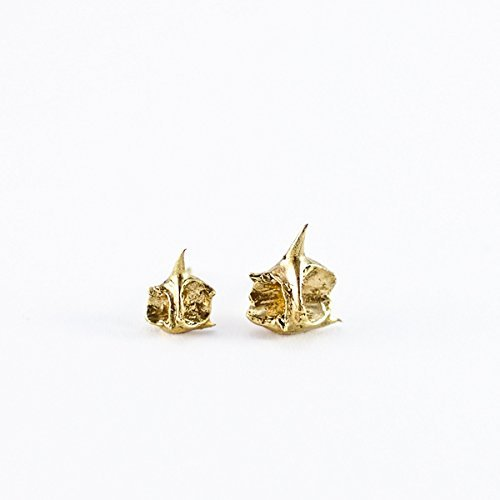 APEX KNUCKLE Stud Earrings