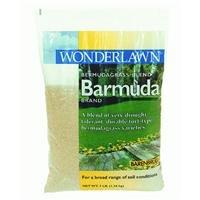 Barmuda Grass Seed