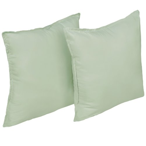 Stayclean Water and Stain Resistant Decorative Pillow, 2-Pack, Sage by Stayclean