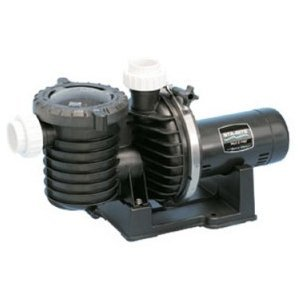 Pentair Sta-Rite P6RA6YG-207L Max-E-Pro Energy Efficient Dual Speed Up Rated Pool and Spa Pump, 2 HP, 230-Volt