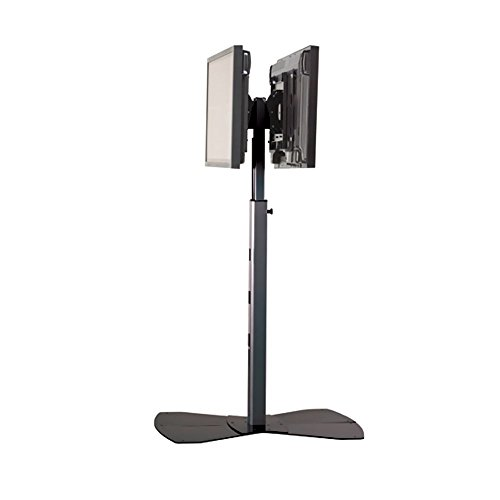 Stand Floor Lfp - PF22000S Lfp Dual Head Floor Stand electronic consumers