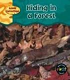 Hiding in a Forest, Patricia Whitehouse, 1403407975