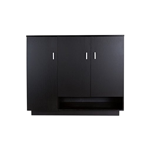 Furniture of America Reanna Modern Shoe Cabinet in Black