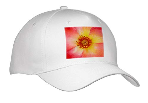 3dRose Stamp City - Flowers - Macro Photograph of The Center of a Playboy Rose. - Adult Baseball Cap (Cap_312234_1)