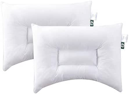 [ 2 Pack ] Baby Toddler Pillows for Sleeping 14 x 19