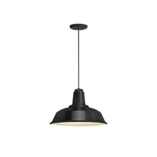 Troy Lighting Outdoor Lamp (Troy RLM 5DRH14MBK-BC Heavy Duty Outdoor Pendant, Black)