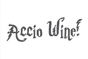 Accio Wine! Unique Harry Potter Style Stemless 15 ounce Funny Wine Glass (1, Accio Wine)