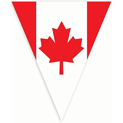 amazon com amscan festive canadian flag pennant banner 12 red
