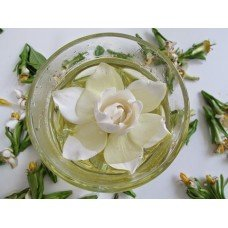 Green Tea & Magnolia - 2697 - Premium Fragrance Oil - 2 oz - Candle Making, Soap Making, Home and Office Diffusers, Hair and Body Products