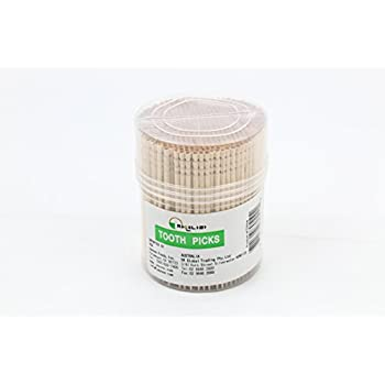 Excelife Ornate Wooden Toothpicks, 500 Pieces