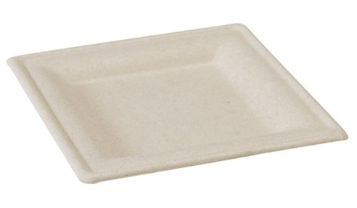 PacknWood Sugarcane Square Disposable Plate, 10.2'' x 10.2'', Brown (Case of 250) by PacknWood