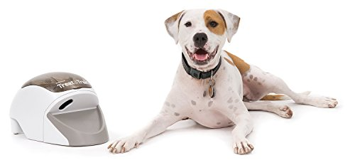 PetSafe-Treat-Train-Remote-Reward-Dog-Trainer