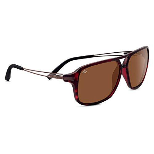 Serengeti Eyewear Lunettes de soleil Venezia 8190satiné foncé Tortue polarisées pilotes