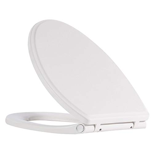 The 9 Best Toilet Seat Quick For 2019 Aralu Reviews