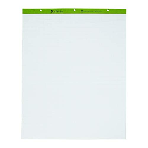 (Ampad 24-032R Evidence Flip Chart Pads Ruled with 1-Inch Squares, 27x34, 50 Sheets Per Pad, 2 Pads Per)