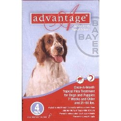 Bayer Topical Flea Treatment for Dogs 21-55 lbs (4 Applications)