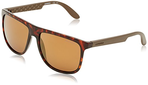 Carrera 5003 DDM Tortoise Carrera 5003 Wayfarer Sunglasses Lens Category - 5003 Sunglasses Carrera